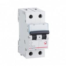 Автомат 2П 20А хар-ка C 6кА TX3 Legrand  404043
